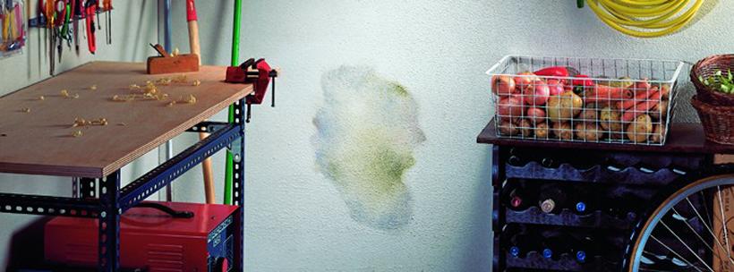 feuchtigkeit in keller oder garage entfernen