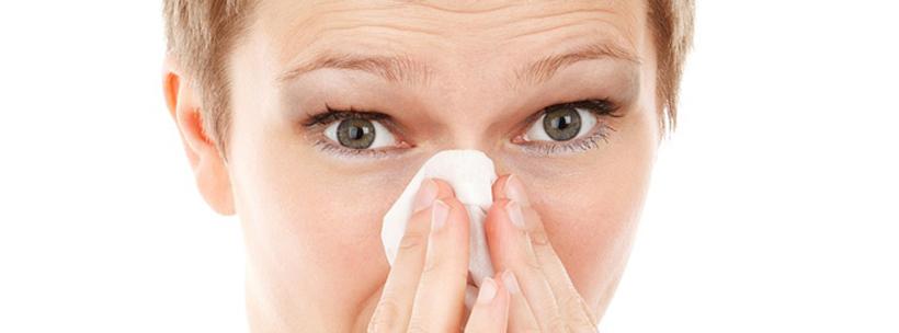 allergie schimmel vorbeugen
